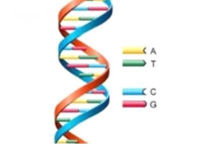 医疗与生命科学